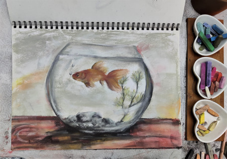 Goldfish in a bowl drawing in pastels