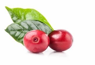 Extracto de fruta de café, Crema Humectante, Relajante y Antioxidante Biowell