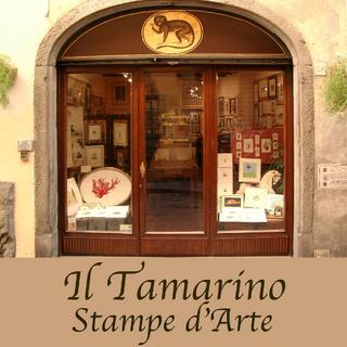Il Tamarino