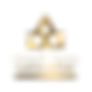 ADG-GOLD-FINAL-RGB-TRANSPARENT-PNG.png