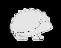newhedgehog.png
