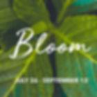 bloom_square_july.jpg