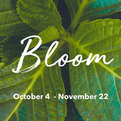 Bloom Program {$100 Discount}