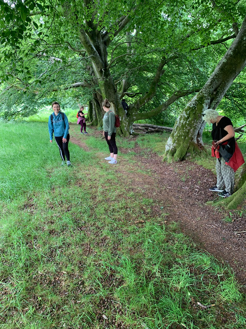 Group Walking July 2021.jpg