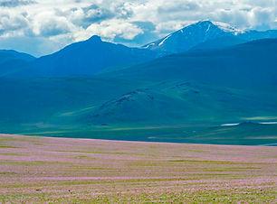 le plus complet trek de l'altaï, découverte rando à pied mongolie, randonnée à pied en mongolie, 21 jours de trek en Mongolie