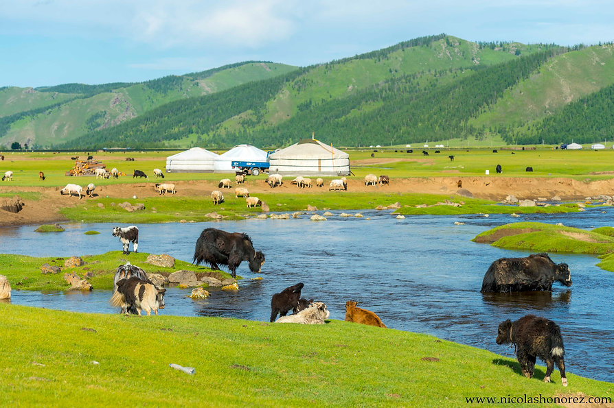 Mongolia-40_GF.jpg