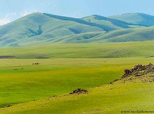 voyage chez les nomades mongolie agence