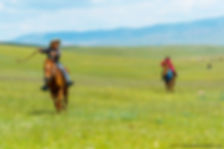 Mongolia-91_GF.jpg