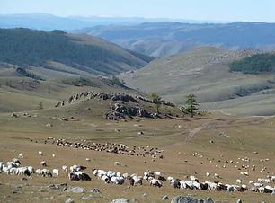 trek dans l'arkhangai, trek de 14 jours, randonnee a pied facile mongolie, trek dans le khangai, monastère de tovkhon, sources chaudes de Tsenkher