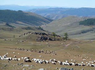 trek et cheval en mongolie agence de voy