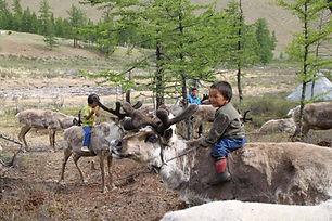 voyage insolite pas cher , voyage mongolie pas cher , enfants en mongolie , tsataans et rennes