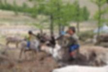 Tsataans eleveurs de rennes en mongolie,