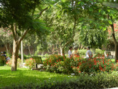 the-retreat-centre-garden.jpg