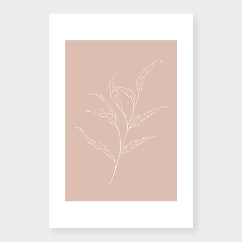 Branche sur rosé