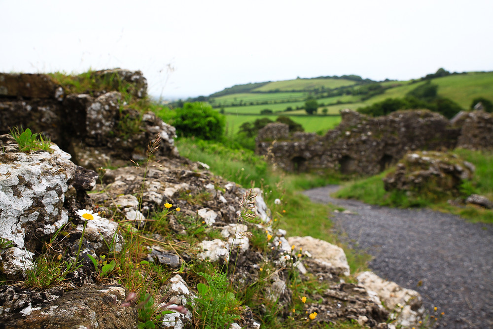 Rock of Dunamase, Irlande