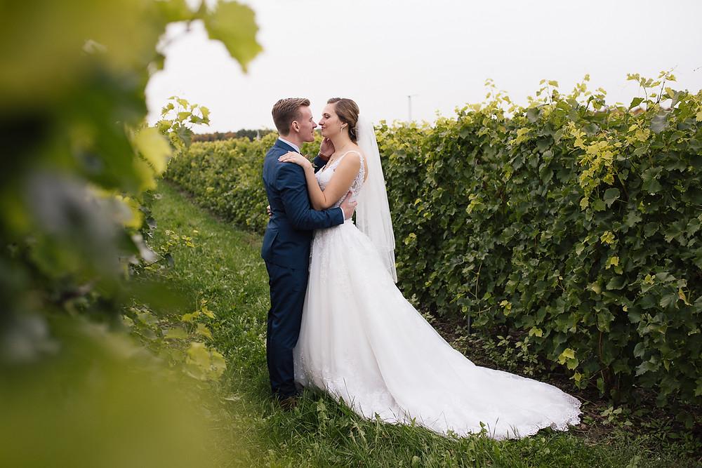 Les mariés au Vignoble