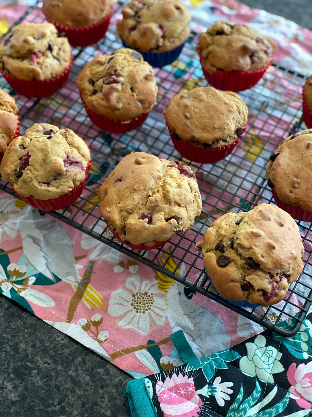 Low Carb Macro Friendly Low Cal Choc Chip Muffins