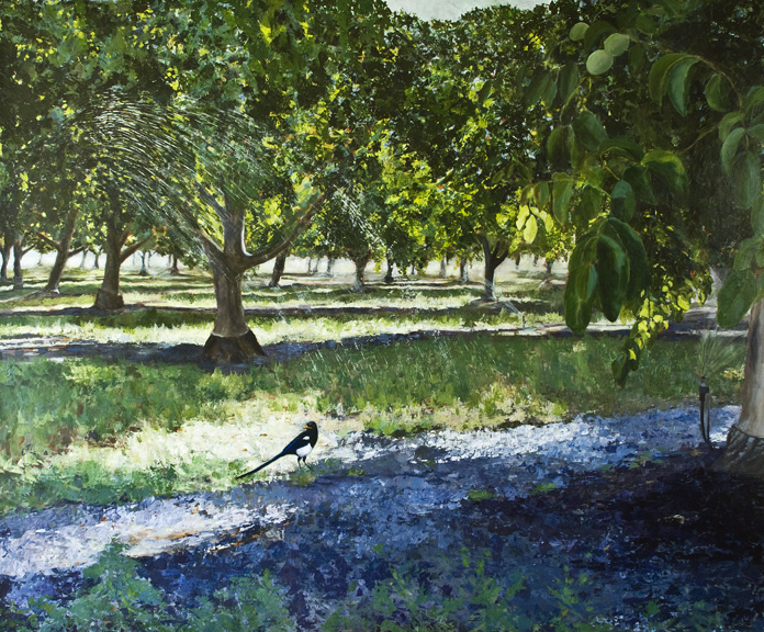 Magpie in Orchard by Gayle Knize