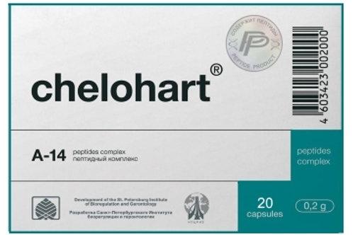 Heart Peptide Chelohart® 20 Capsules