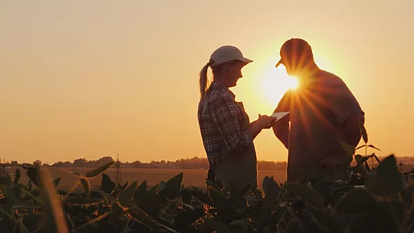 Farmers man and woman communicate in the