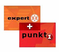 Expert_Punkt1.jpg