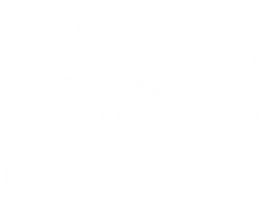 Zsenge_logo_whiteArtboard 10@300x.png