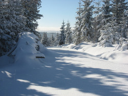 Winter-2013 006