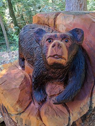 Kuykedall the bear 107 boyd dr.