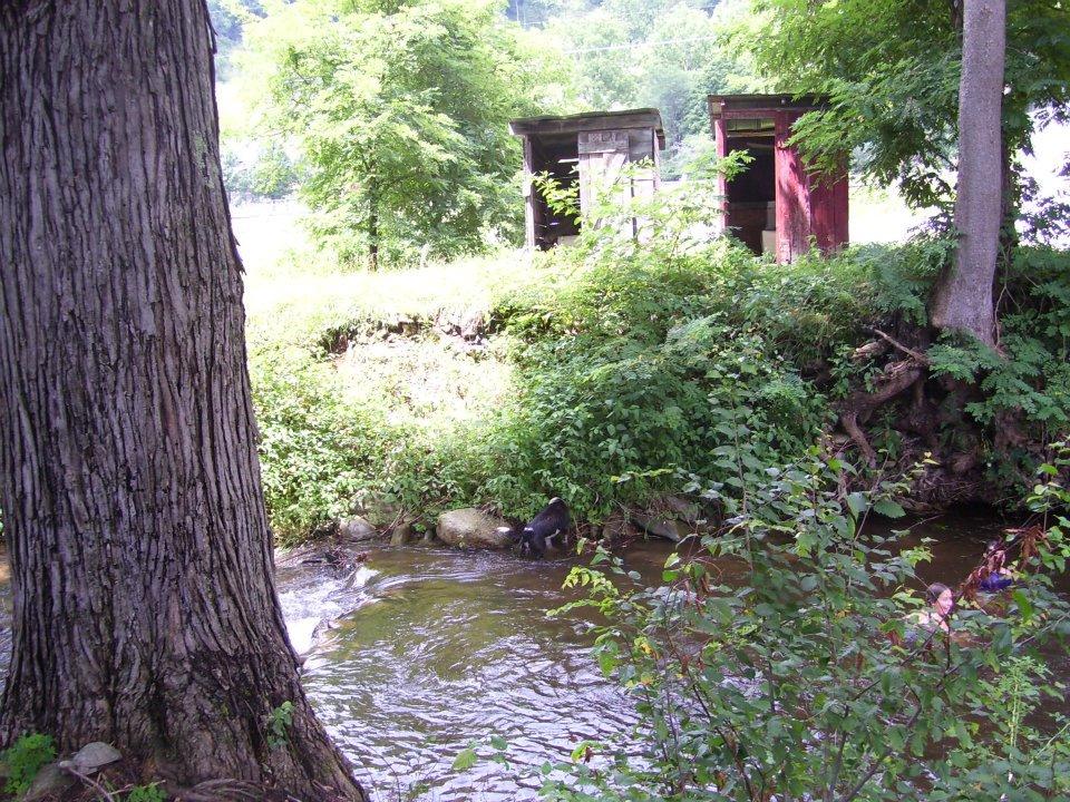 Ivy Creek