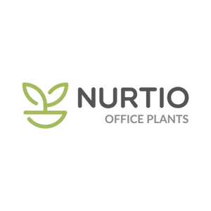 Nurtio_office plants.png