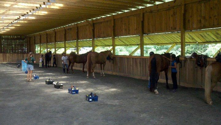 Grooming in the indoor arena