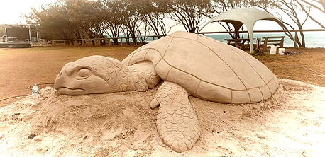 turtle sandcastle sandshapers.jpg
