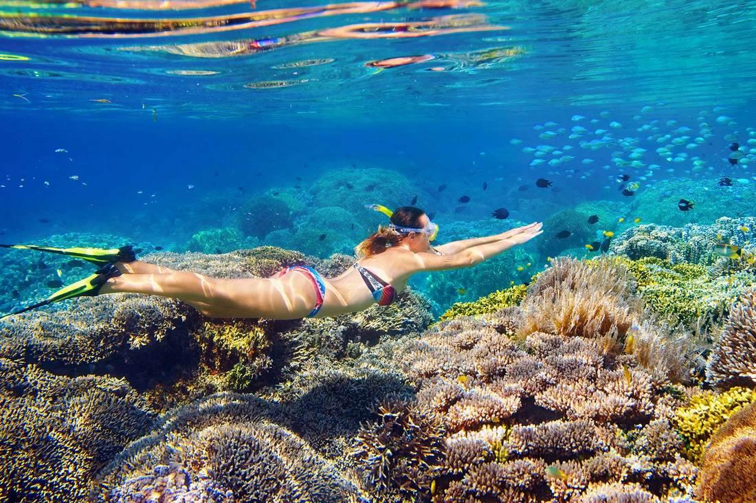 snorkelling-port-douglas-aquaquest_1_ori