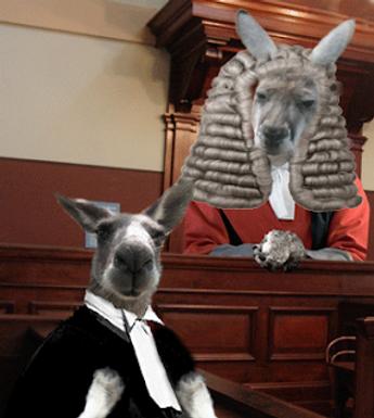kangaroo-court.png