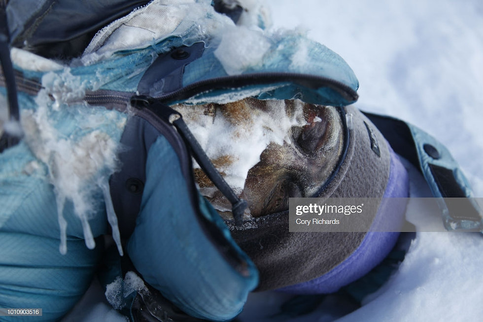 gettyimages-1010903516-1024x1024.jpg