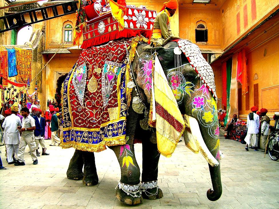 Decorated_Indian_elephant 2120.jpg