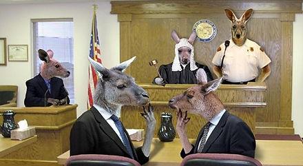 kangaroo-court-1.jpg