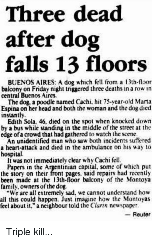 three-dead-after-dog-falls-13-floors-bue