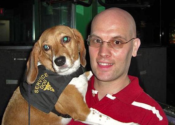 belle-service-dog.png