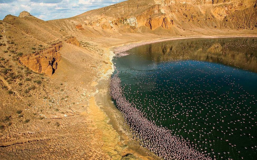 lake-turkana-flamingoes-kenya-LAKETURKAN