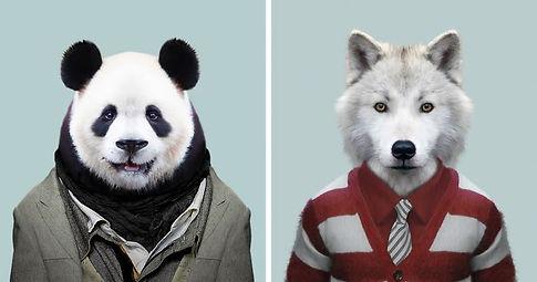 animals-dressed-like-humans-zoo.jpg