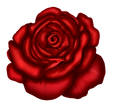 Red_Rose_Art_Picture.png