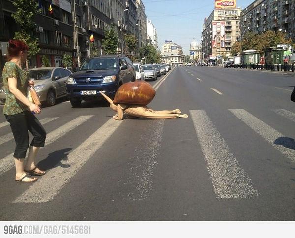 Funny-Human-Snail-Situations-Image.jpg