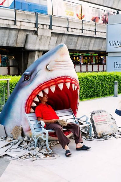 Funny-Shark-Attack-Situations-Picture.jp