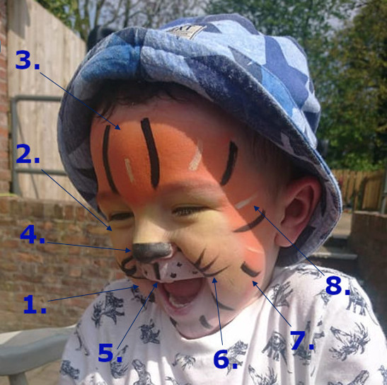 Tiger Face Paint Guide
