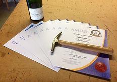 AMUSF diploma
