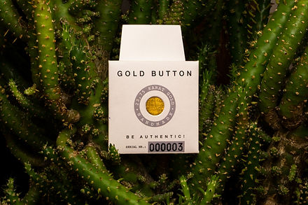 Goldbutton-kaktus.jpg