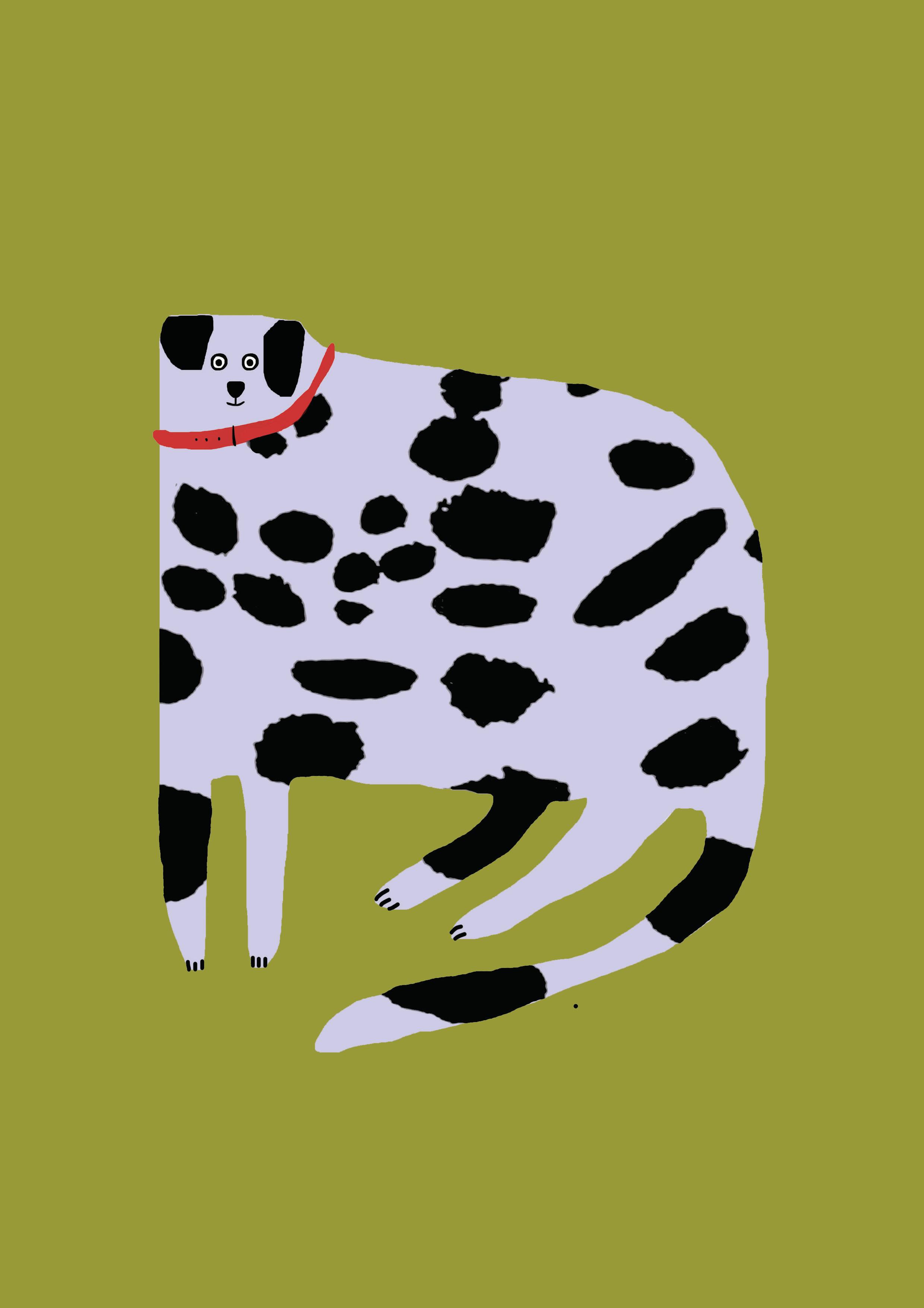 dogcolour
