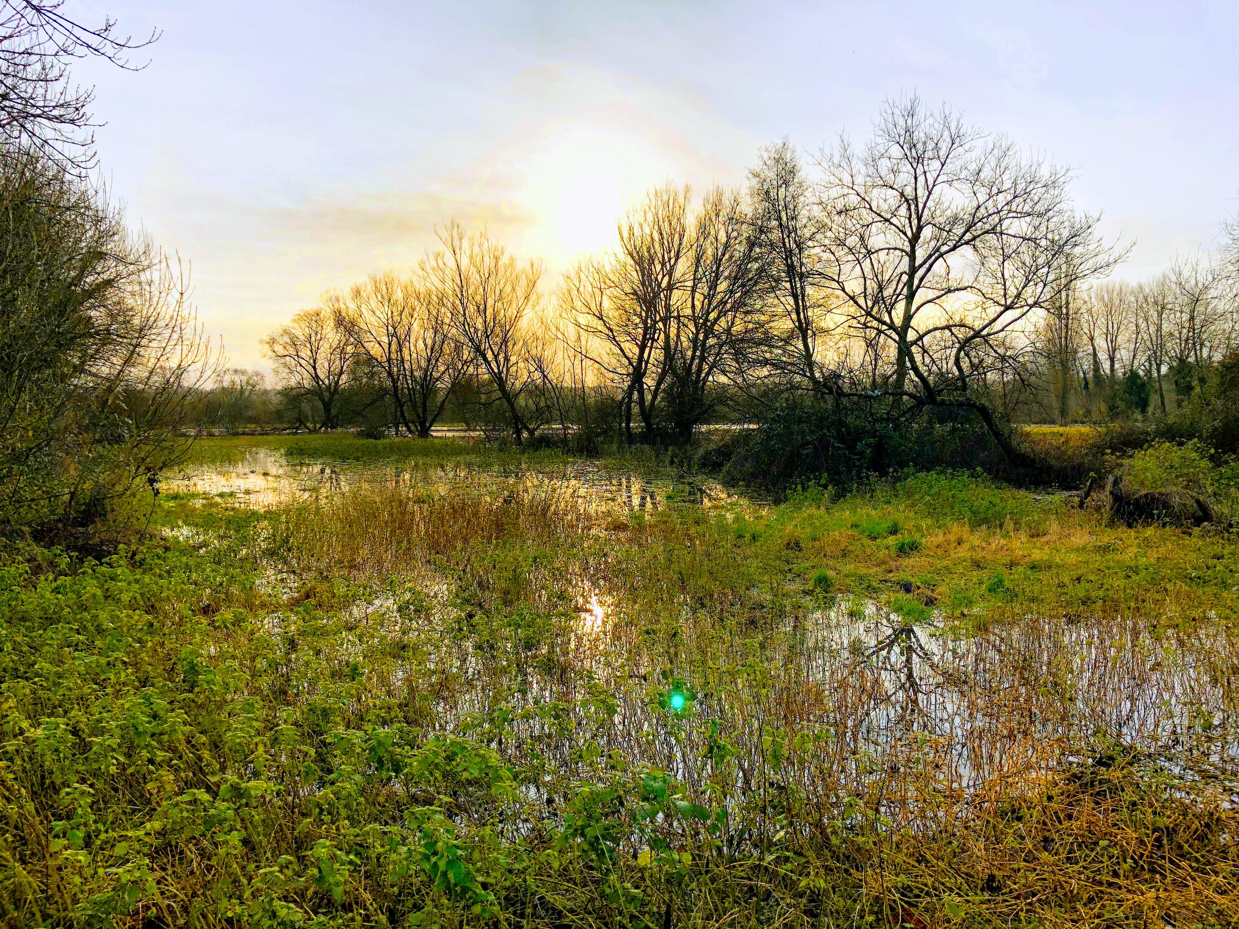 Floods 2020