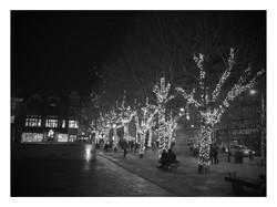 Market Square Lights